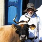 Lili la vache